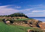Whistling Straits' Eighth Hole